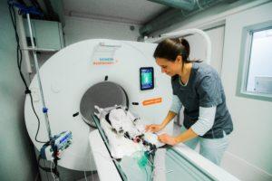 CT scanning på Herlev Dyreklinik af hund